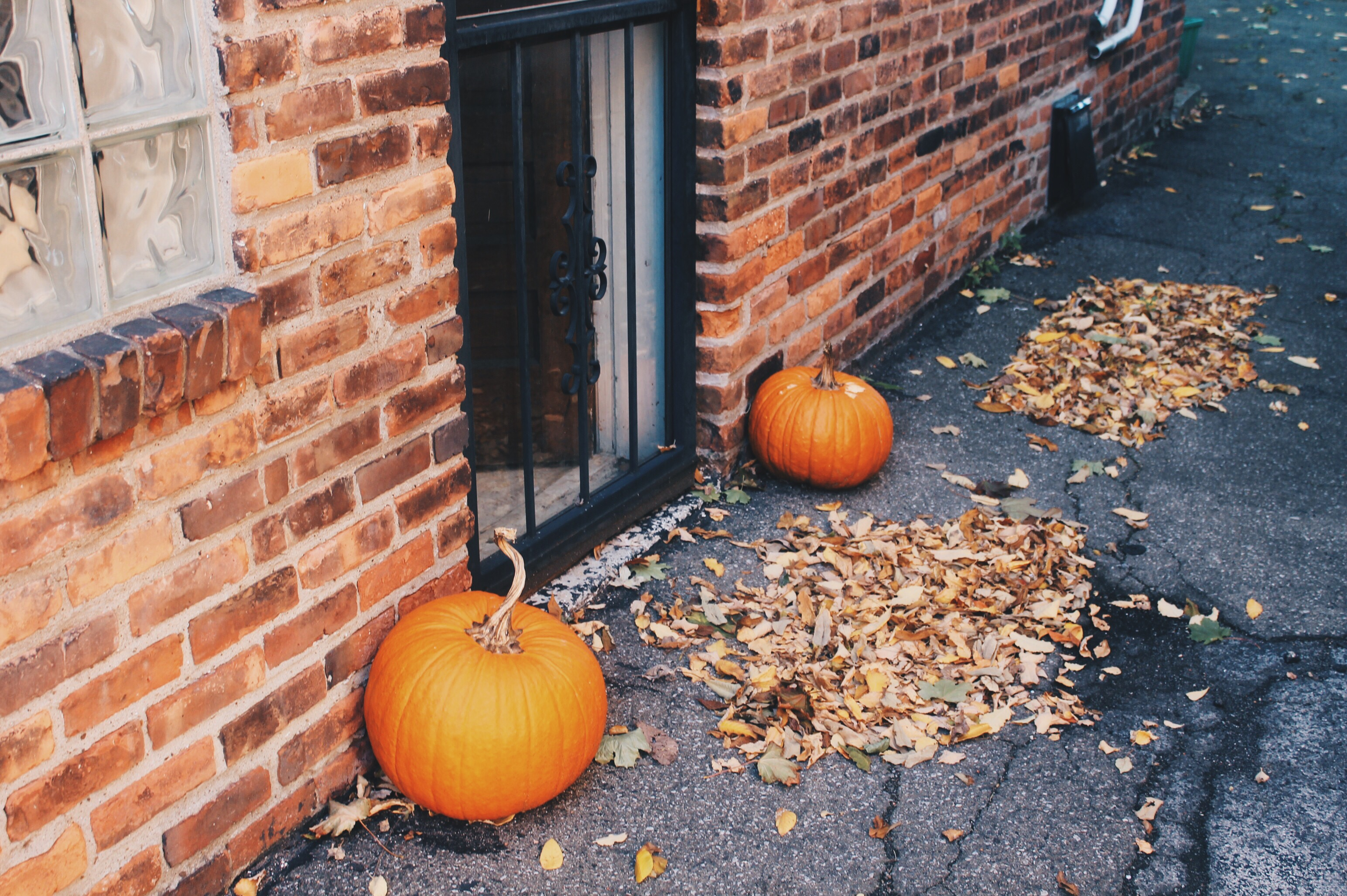 How to: Simple Fall Decorations on a Budget